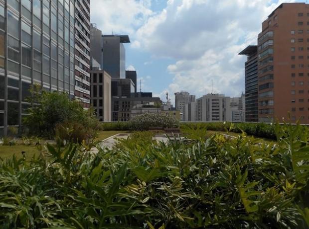 Topo do edifício da Gazeta, com teto verde plantado em janeiro do ano passado